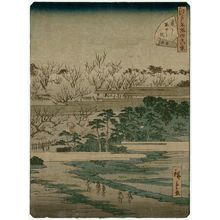 Utagawa Hiroshige II: No. 24, Plum Garden at Kameido (Kameido umeyashiki), from the series Forty-Eight Famous Views of Edo (Edo meisho yonjûhakkei) - Museum of Fine Arts