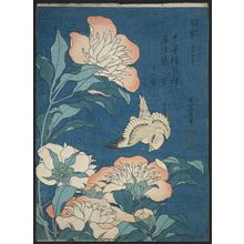 葛飾北斎: Peonies and Canary (Shakuyaku, kanaari), from an untitled series known as Small Flowers - ボストン美術館