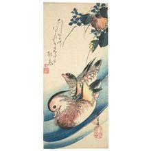 Utagawa Hiroshige: Mandarin Ducks and Mizu-aoi - Museum of Fine Arts