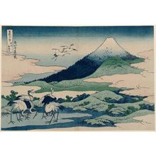 Katsushika Hokusai: Umezawa Manor in Sagami Province (Sôshû umezawa hidari [=zai?]), from the series Thirty-six Views of Mount Fuji (Fugaku sanjûrokkei) - Museum of Fine Arts