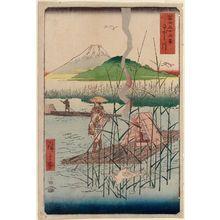 Utagawa Hiroshige: The Sagami River (Sagamigawa), from the series Thirty-six Views of Mount Fuji (Fuji sanjûrokkei) - Museum of Fine Arts