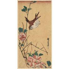 Utagawa Hiroshige: Sparrow and Camellia - Museum of Fine Arts