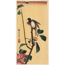 Utagawa Hiroshige: Bird on Camellia Branch - Museum of Fine Arts