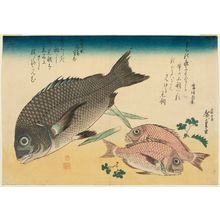 Utagawa Hiroshige: Black Sea Bream, Small Sea Bream, Asparagus Shoots, and Sansho Pepper, from an untitled series known as Large Fish - Museum of Fine Arts