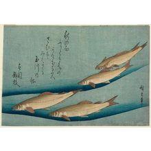 歌川広重: Trout, from an untitled series known as Large Fish - ボストン美術館