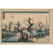 Utagawa Hiroshige: Cherry Trees in Bloom on the Embankment at Koganei (Koganei tsutsumi no hanazakari), from the series Snow, Moon, and Flowers at Famous Places (Meisho setsugekka) - Museum of Fine Arts