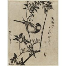 Utagawa Hiroshige: Finch on Aronia Branch - Museum of Fine Arts