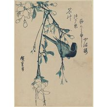 Utagawa Hiroshige: Bird and Mountain Cherry - Museum of Fine Arts