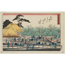 Utagawa Hiroshige: Plum Garden at Kameido (Kameido umeyashiki), from the series Famous Places in Edo (Edo meisho) - Museum of Fine Arts