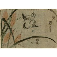 Utagawa Kuniteru: Sparrow and Bulrushes - Museum of Fine Arts