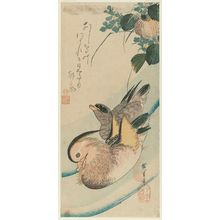 Utagawa Hiroshige: Mandarin Ducks and Mizu-aoi - Museum of Fine Arts