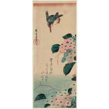 歌川広重: Kingfisher and Hydrangea - ボストン美術館