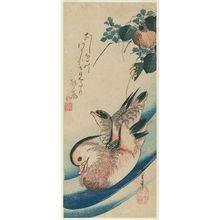 歌川広重: Mandarin Ducks and Mizu-aoi - ボストン美術館