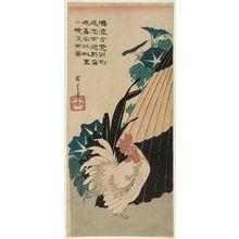 Utagawa Hiroshige: Morning Glories, Umbrella, and White Rooster - Museum of Fine Arts