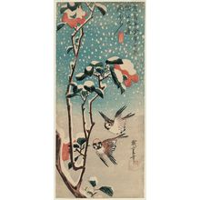 Utagawa Hiroshige: Sparrows and Camellia in Snow - Museum of Fine Arts