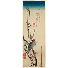 Utagawa Hiroshige: Red-cheeked Bird and Red Plum Blossoms - Museum of Fine Arts