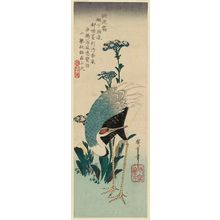 Utagawa Hiroshige: Crane and Asters - Museum of Fine Arts