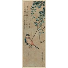 Utagawa Hiroshige: Finch on Wisteria Vine - Museum of Fine Arts