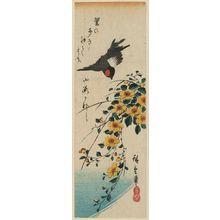 Utagawa Hiroshige: Yamabuki and Bullfinch - Museum of Fine Arts