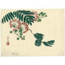 Harada Keigaku: Mimosa Branch - Museum of Fine Arts
