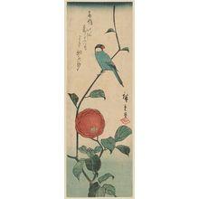 Utagawa Hiroshige: Finch and Camellia - Museum of Fine Arts