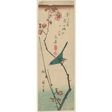 Utagawa Hiroshige: Warbler on Red Plum Branch - Museum of Fine Arts