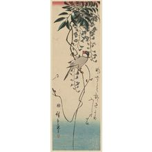 Utagawa Hiroshige: Finch and Wisteria - Museum of Fine Arts