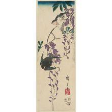 Utagawa Hiroshige: Swallows and Wisteria - Museum of Fine Arts