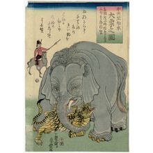 Utagawa Yoshitoyo: The Great Elephant Imported from Central India (Chû Tenjiku hakurai dai zô no zu) - Museum of Fine Arts