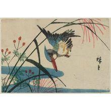 Utagawa Hiroshige: Kingfisher and Pampas Grass - Museum of Fine Arts