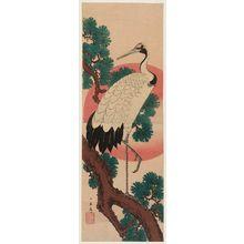 歌川広重: Crane, Pine, and Sun - ボストン美術館