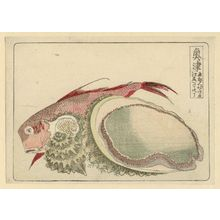 葛飾北斎: Okitsu, from an untitled series of the Fifty-three Stations of the Tôkaidô Road - ボストン美術館