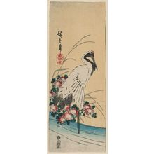 Utagawa Hiroshige: Wading Crane and Wild Chrysanthemums, cut from an unidentified harimaze sheet - Museum of Fine Arts