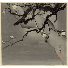 Toyokawa Yoshikuni: Plum tree at night - Museum of Fine Arts