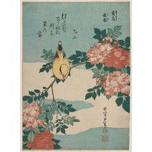 葛飾北斎: Warbler and Roses (Kôchô, bara), from an untitled series known as Small Flowers - ボストン美術館