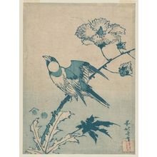 Katsushika Hokusai: Finch on Hibiscus, from an untitled series of blue (aizuri) prints - Museum of Fine Arts