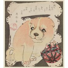 Yanagawa Shigenobu: Puppy Playing with a Ball - Museum of Fine Arts