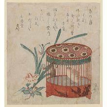 柳々居辰斎: Caged Quail, Narcissus, And ? Blossoms - ボストン美術館