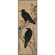 河鍋暁斎: Two Crows on a Plum Branch with Rising Sun - ボストン美術館