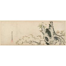 Kubo Shunman: Old Cherry Tree - Museum of Fine Arts