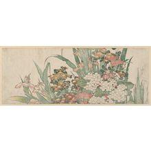 Katsushika Hokusai: Iris, Hydrangea, Pinks, and Chrysanthemums - Museum of Fine Arts