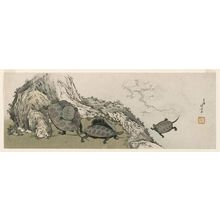 Katsushika Hokusai: Turtles and Reflected Plum Branch - Museum of Fine Arts