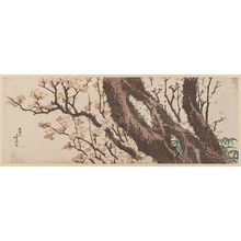 Katsushika Hokusai: Plum Tree and Bamboo Grass - Museum of Fine Arts