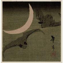 Katsushika Taito II: Bats and Moon - ボストン美術館