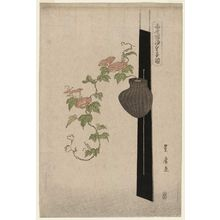 Utagawa Toyohiro: Morning Glories in a Hanging Basket, from the series Flower Arrangements by Various Modern Schools (Tôsei shoryû ikebana zu) - Museum of Fine Arts