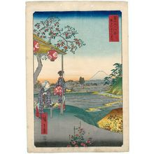 Utagawa Hiroshige: Fuji-view Teahouse at Zôshigaya (Zôshigaya Fujimi chaya), from the series Thirty-six Views of Mount Fuji (Fuji sanjûrokkei) - Museum of Fine Arts