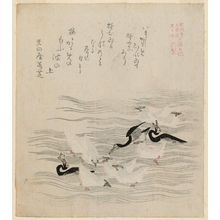 窪俊満: Cormorants and Seagulls, from the series The Tosa Diary for Shôfûdai, Hisakataya and Bunbunsha (Shôfûdai Hisakataya Bunbunsha Tosa nikki) - ボストン美術館