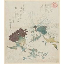Kubo Shunman: Flowers and Pine Branch, from the series Asakusagawa Tsurezuregusa - Museum of Fine Arts