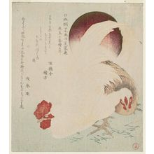 Kubo Shunman: Cock, Hen and Rising Sun, from the series Series of Seven Bird-and-Flower Prints for the Fuyô Circle of Kanuma in Shimotsuke Province (Yamagawa Shimotsuke Kanuma Fuyô-ren kachô nana bantsuzuki no uchi) - Museum of Fine Arts