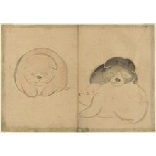 中村芳中: Puppies, from the album Kôrin gafu (An Album of Pictures by Kôrin) - ボストン美術館